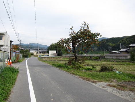 20131109hike(130)
