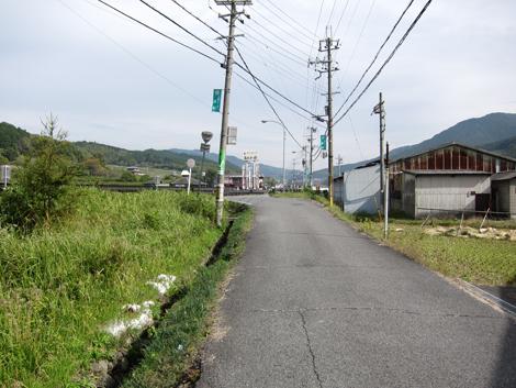 20131109hike(133)