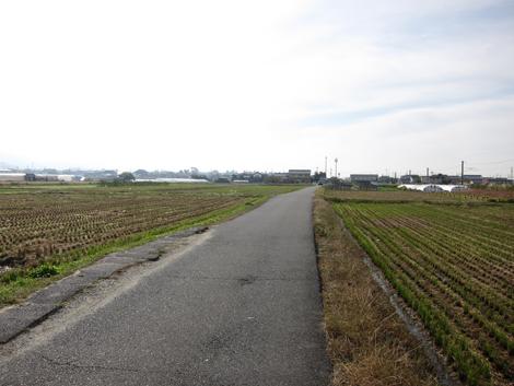20131109hike(25)